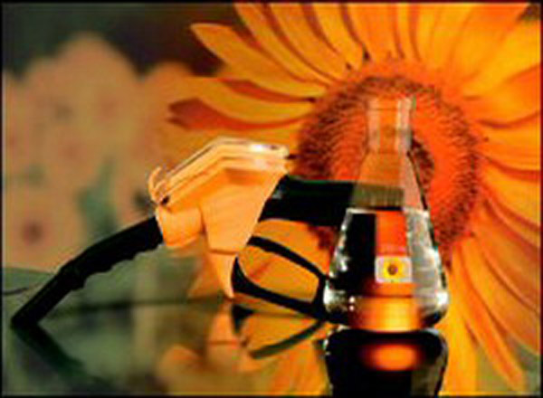 Авто-новости: Биотопливо губит планету